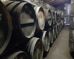 Chez Gendron - Saint-Palais - Dégustation de vin